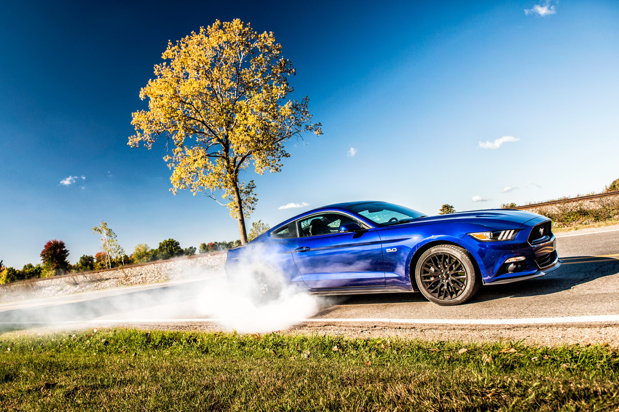Ford Mustang Gt Burnout Photo   King Of The Street