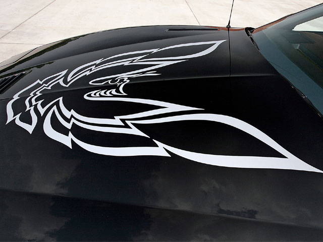 The screaming chicken is in single color and listed as RPO Code DX-1. This Trans Am didn't gain this option from the factory, so at the customer's request, it was dealer-installed. It doesn't appear on the Trans Am's buildsheet.