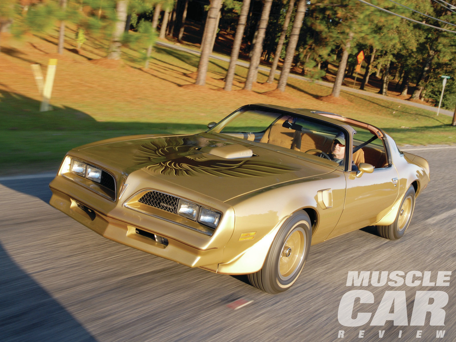 This Gold Special Edition T/A was once part of the Milton Robson collection. Tim admired it when Robson owned it and jumped at the chance to buy it when R-M auctioned the collection.