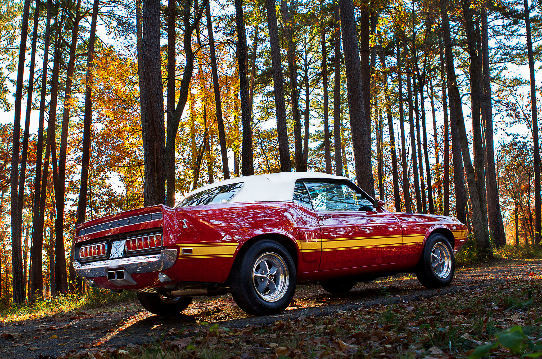 Hannah Way, a 21 year-old photographer from Texas, posed the Shelby with just the right amount of light in this location not far from the Billups restoration shop. Autumn in the Ozarks is amazing, as is this convertible Shelby. The Candyapple red paint with yellow stripes blends in well with the fall leaves. Carroll would be proud of this restoration.
