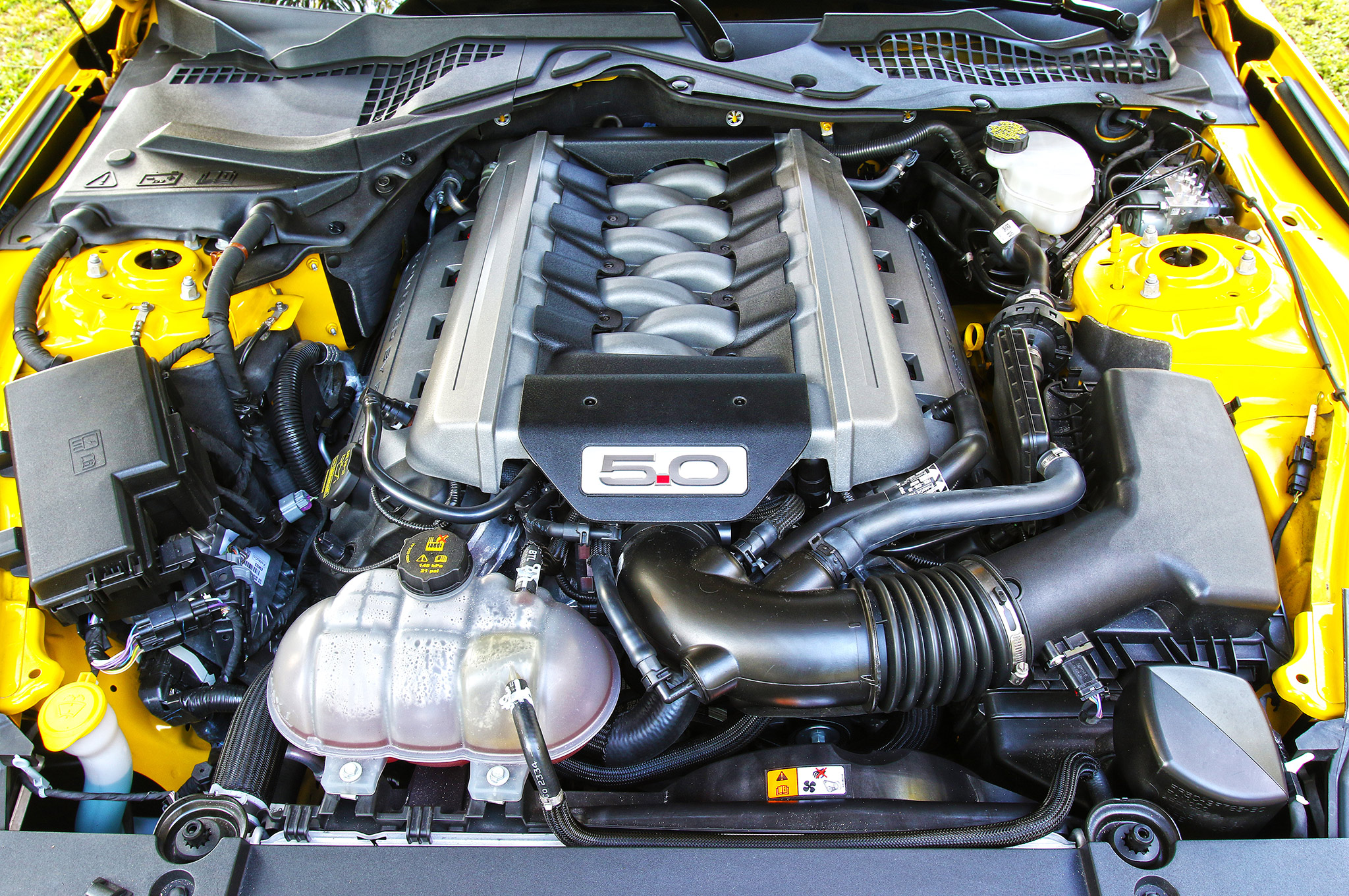 The factory 5.0 Coyote looks cool and produces 435 hp. It sounds ultrasweet at redline.