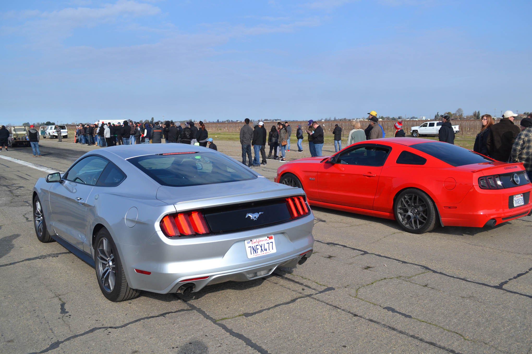 It wasn't just old muscle at Kingdon, as evidenced by the grudge race between these two new Mustangs. There were also a few Corvettes, GTOs, and Cadillacs thrown into the mix.