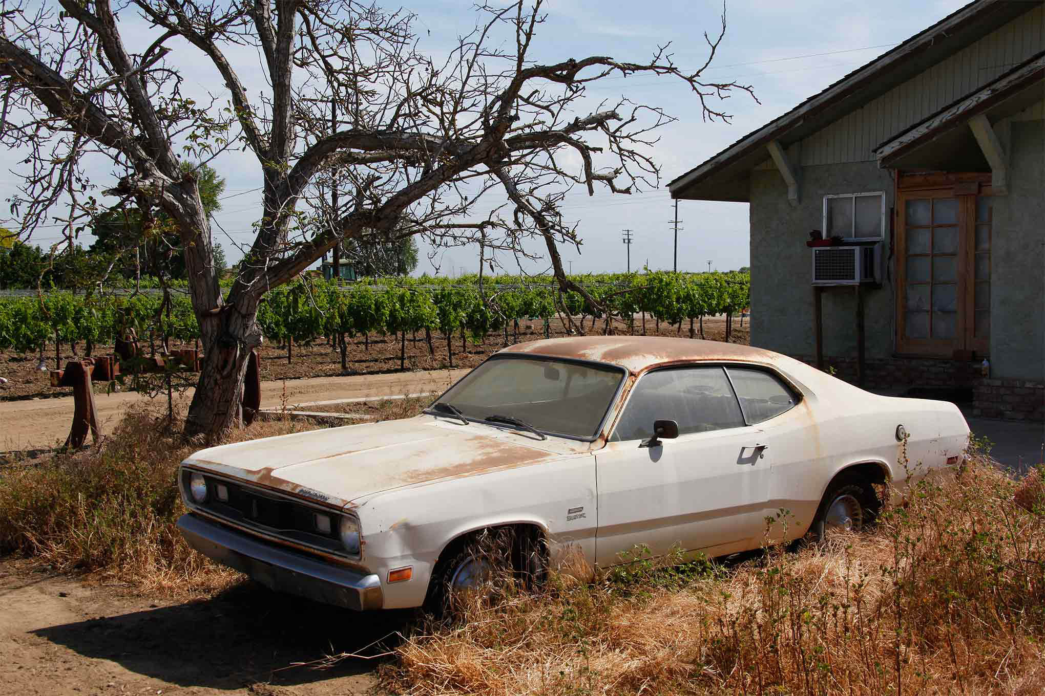 Before it became Roadkill's Crop Duster, this weather-beaten '70 Plymouth Duster languished on the grape farm belonging to contributor Steve Dulcich.