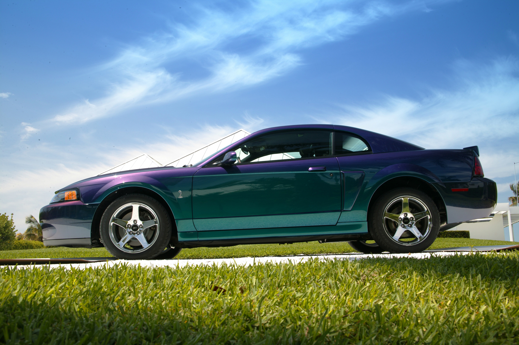 Color Shift Ford Mustang Color Popularity Over The Decades Motor