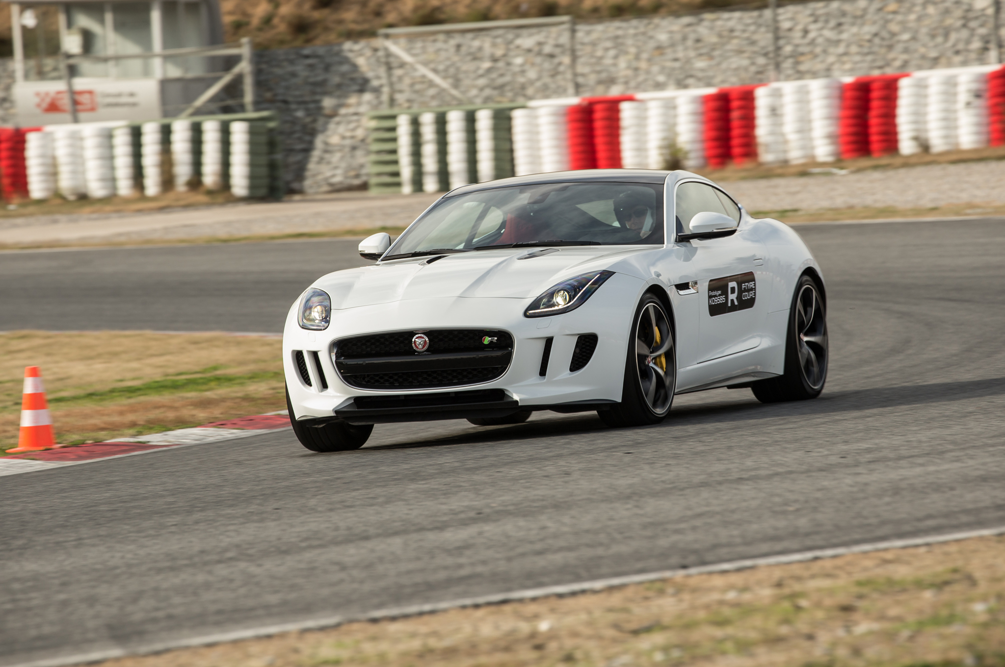 Jaguar Leaps Into the 21st Century - The Big Picture