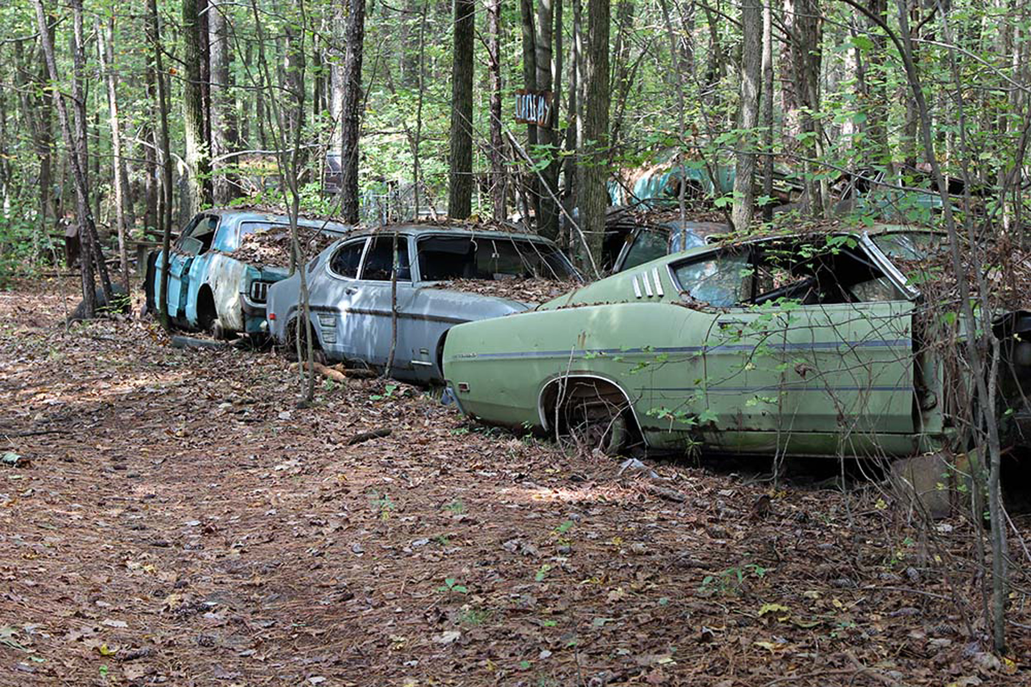 Old Car City, USA is Where Classic Cars go to Rust in Peace - Motor ...