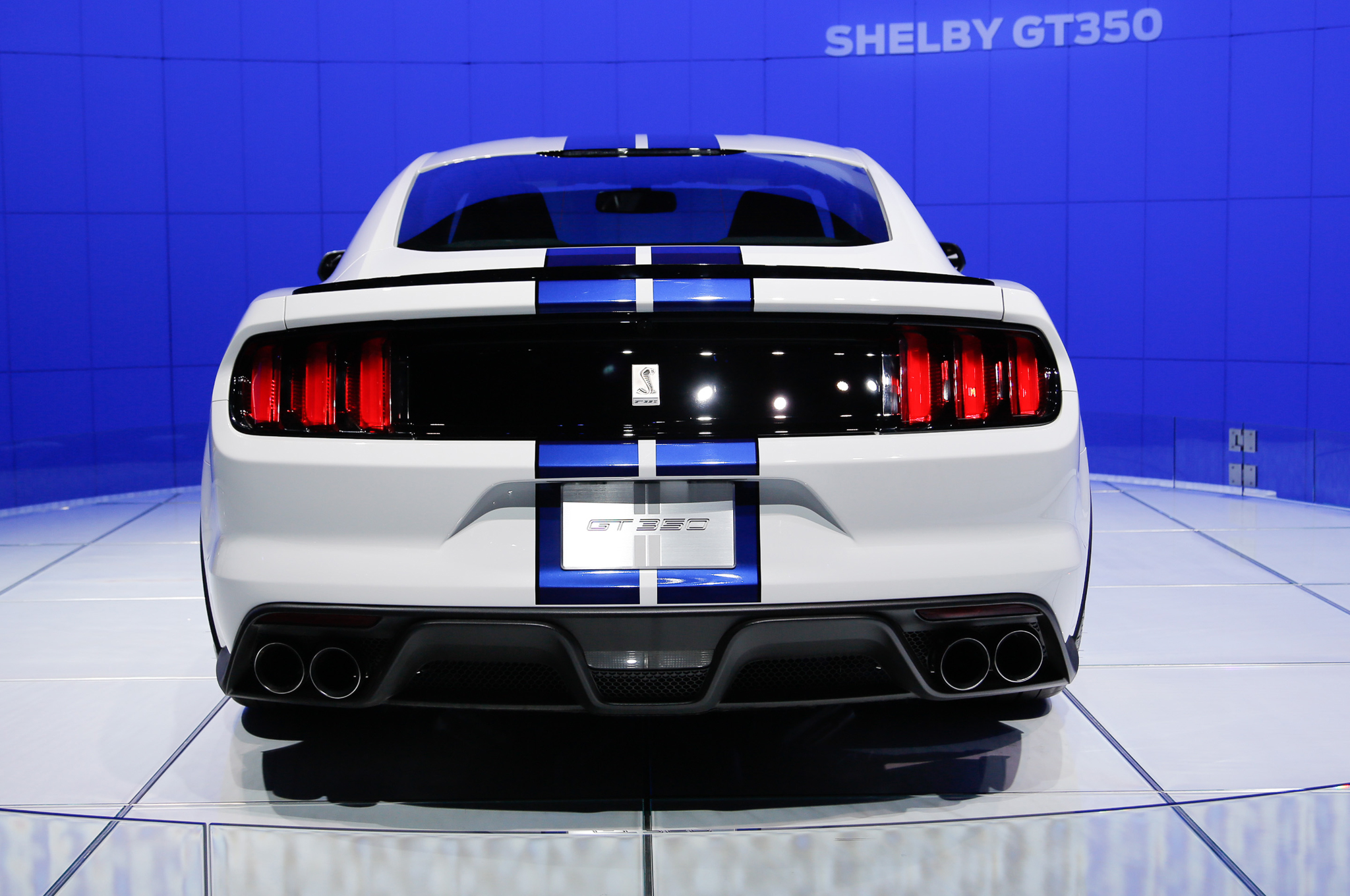 Ford Shelby Gt Mustang Chassis First Look