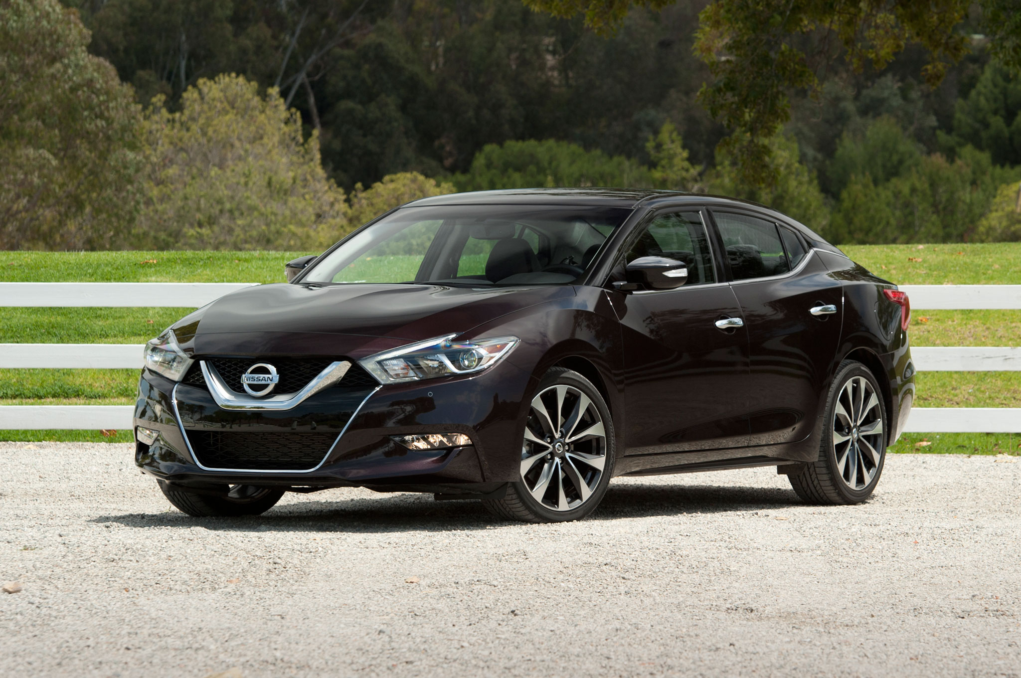 Nissan Issues Stop Sale On Some 2016 Maxima Sedans